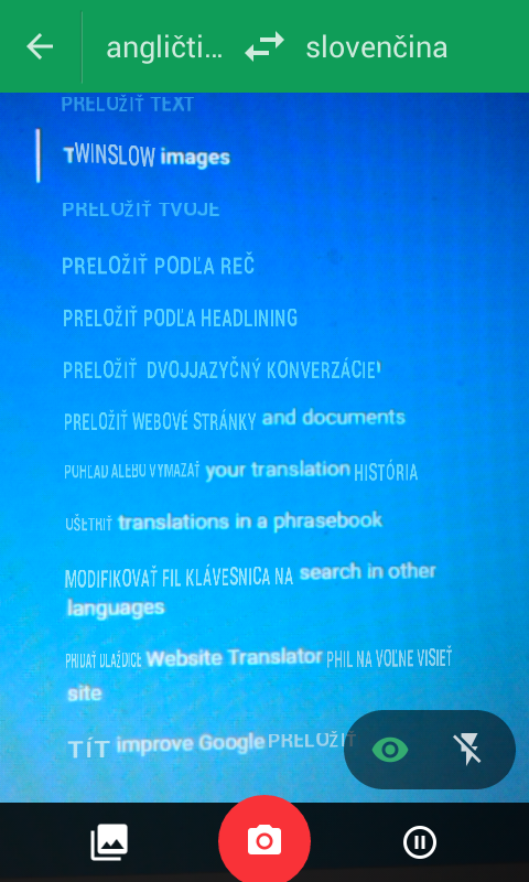 Google translate big text